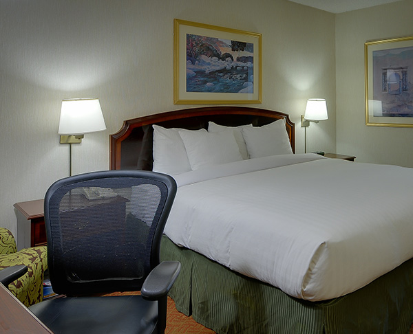 Vagabond Inn Executive - San Francisco Airport Bayfront (SFO) 1 King Bed