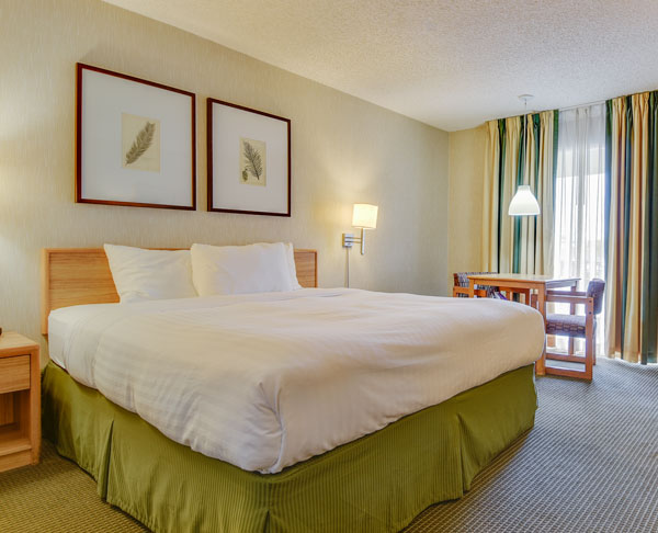 Vagabond Inn - Los Angeles at USC ADA Accessible - N/S King Bed