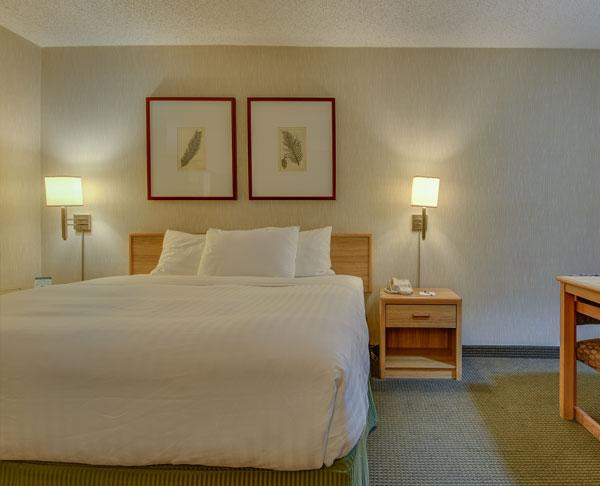 Vagabond Inn - Los Angeles at USC King Bed