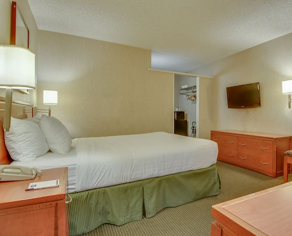 Vagabond Inn - Los Angeles at USC Queen Bed