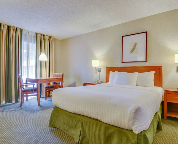 Vagabond Inn - Los Angeles at USC Queen Bed