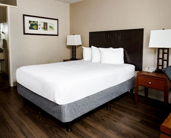 Vagabond Inn - Oxnard Queen Bed