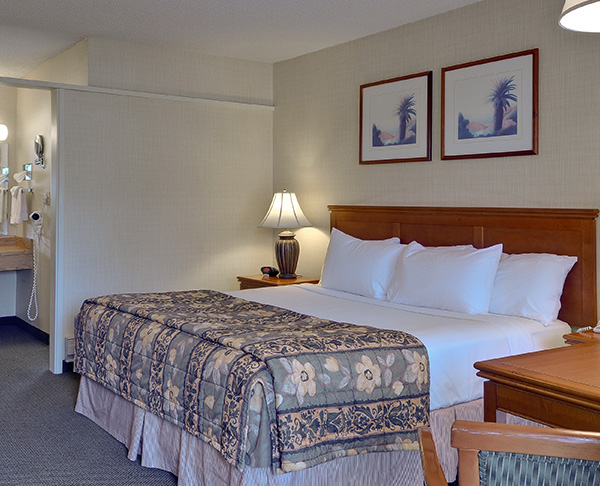 Vagabond Inn - Ventura King Bed