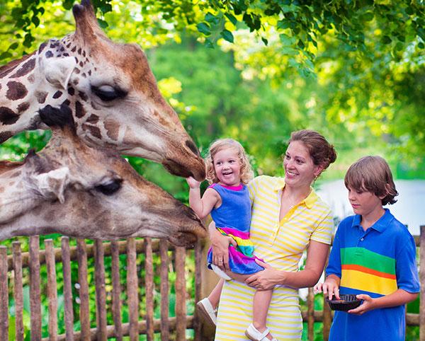 Fresno - Chaffee Zoological Gardens