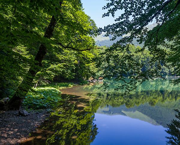 Green Valley - Quail Creek Country Club
