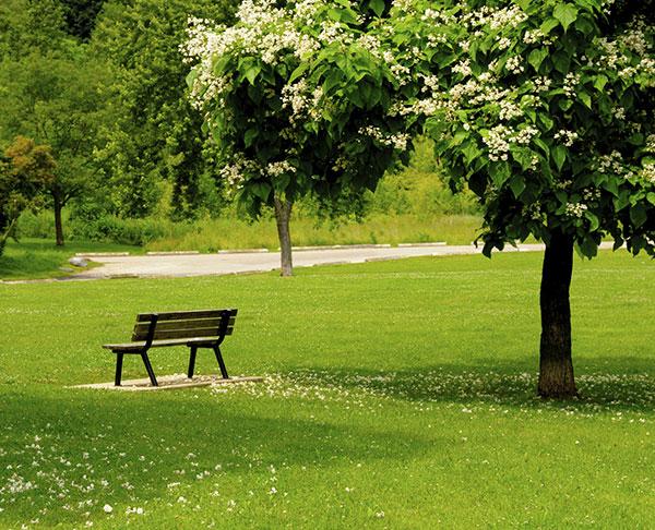 Hayward - Garin Regional Park