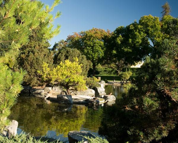 San Jose - Japanese Friendship Garden