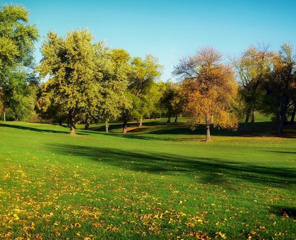 El Cariso Park, Sylmar